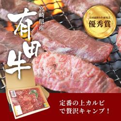 宮崎県産有田牛 極上サーロイン牛で贅沢キャンプ!